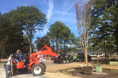 2015-Pullmann-Services-Images-Res-TreeService